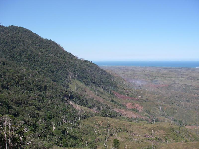 Figur 4. Bemangidy forest på sydöstra Madagaskar med regnskogsklädda sluttningar men där bränderna härjar och efterlämnar döda trädstammar i ett antropogent gräslandskap. Foto: Laurent Gautier (11 december 2012).