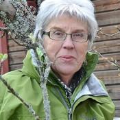Birgitta Berggren